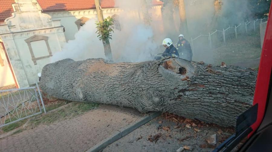 Pożar drzewa przy kościele